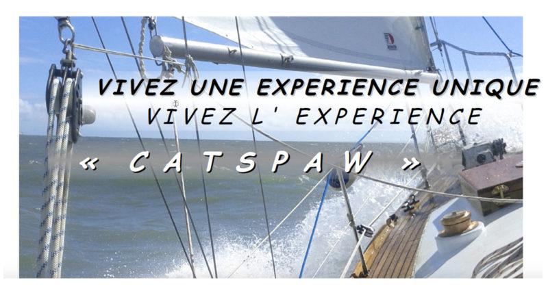 expérience catspaw